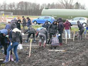 Klimawald pflanzen. Foto: D. Labode